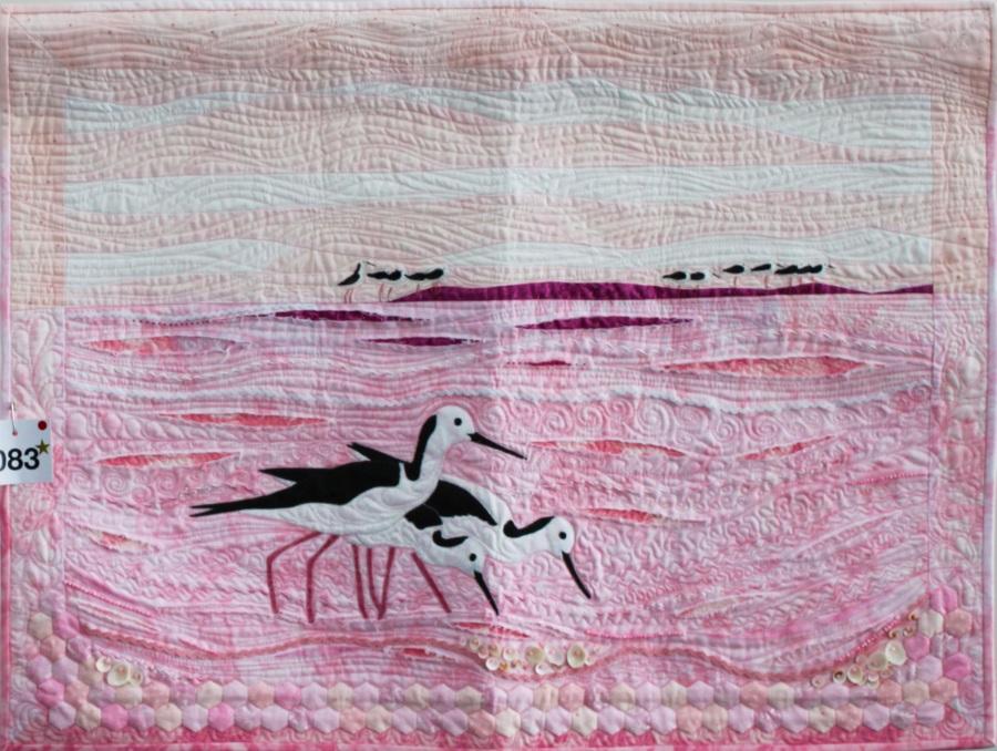 Stilts on Pink Lake by Elizabeth Humphreys; 1st time entrant amateur 3rd